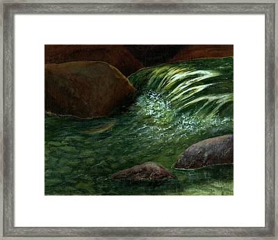 Framed Print featuring the painting The Brookie by Jo Appleby