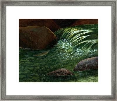 The Brookie Framed Print by Jo Appleby