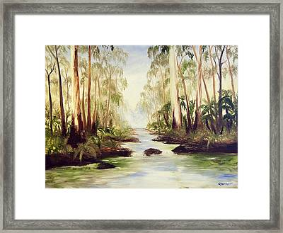 The Buckland River Framed Print