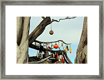 Framed Print featuring the photograph The Buoy Tree by Jo Sheehan