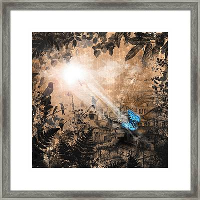 The Butterfly That Thought It Was A Moth Framed Print by Carly Ralph