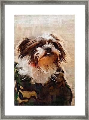 The Camo Makes The Dog Framed Print by Kathy Clark