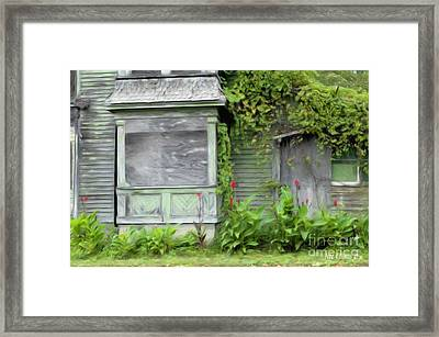 The Canna Farm Framed Print by Anne Kitzman