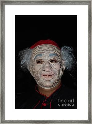 The Cardinal Framed Print by Anne Gordon