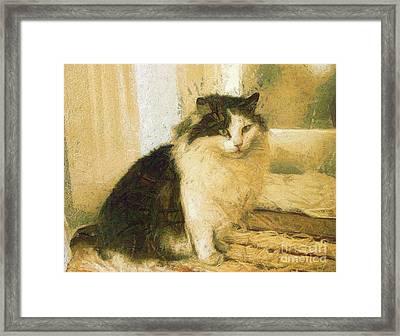 The Cat Framed Print by Odon Czintos
