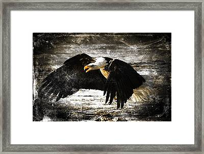 The Chase Framed Print by Carrie OBrien Sibley