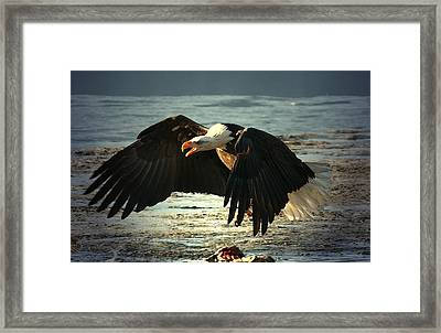 Framed Print featuring the digital art The Chase Is On by Carrie OBrien Sibley