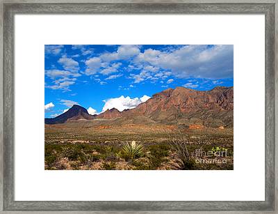 The Chisos Mountains Big Bend Texas Framed Print by Gregory G Dimijian MD