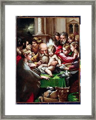 The Circumcision Framed Print by Francesco Mazzola Parmigianino