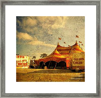 The Circus Is In Town Framed Print by Susanne Van Hulst