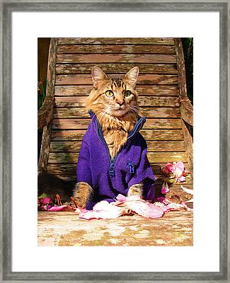 The Color Purple Framed Print by Joann Biondi