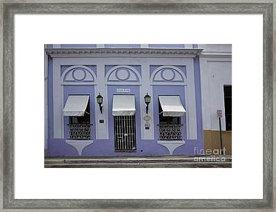 The Color Purple Framed Print by Timothy Johnson