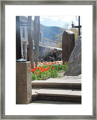 Framed Print featuring the photograph The Colorado Rain by Shawn Hughes