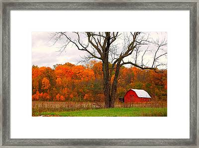 The Colors Of Fall Framed Print by Robin Pross