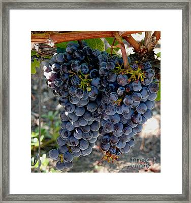 The Concord Framed Print by Richard Ortolano