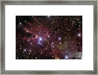 The Cone Nebula And Christmas Tree Framed Print