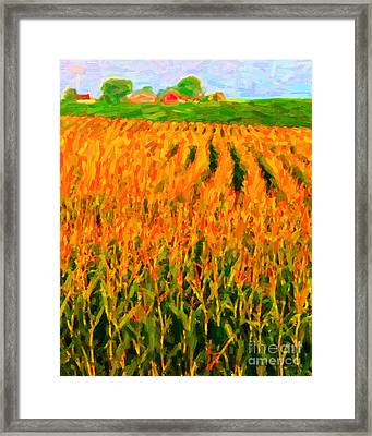 The Cornfield Framed Print by Wingsdomain Art and Photography