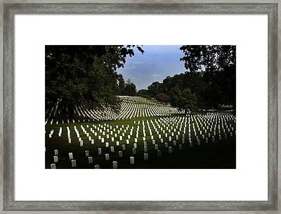 The Cost Framed Print