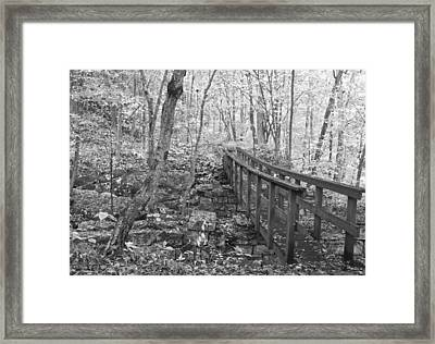 The Crossing Framed Print by David Troxel