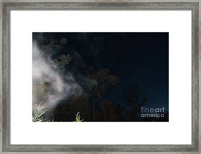 The Curious Framed Print by Doug Kean