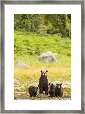 The Curious Mom Framed Print by Tim Grams