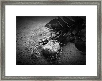 The Day After Framed Print