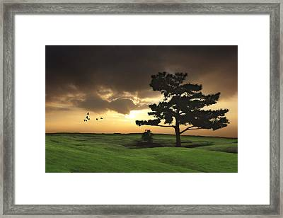 The Day Is Done Framed Print by Tom York Images