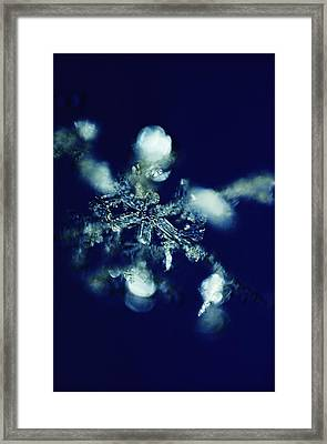 The Details Of A Snowflake Framed Print