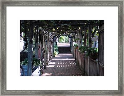 The Dinner Walk Framed Print by