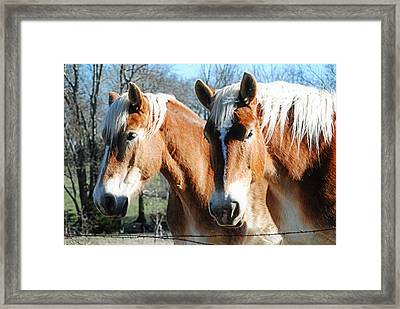 The Drafts Framed Print by Lisa Moore