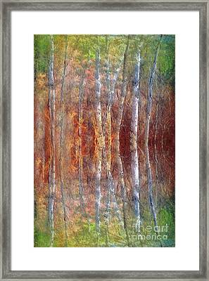 The Dream Forest Framed Print