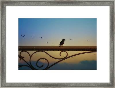 The Dreamer Framed Print by Bill Cannon
