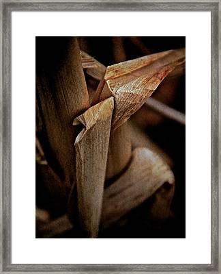 The Dry Season Framed Print by Odd Jeppesen