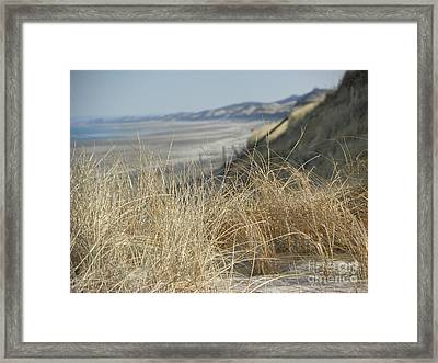 The Dunes II Framed Print by John Doble