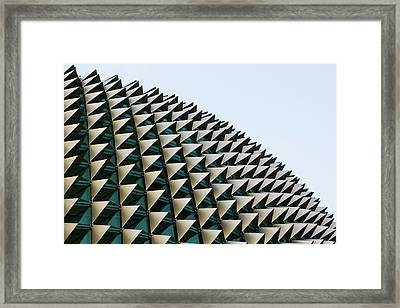The Durian Framed Print by Ion-Bogdan DUMITRESCU