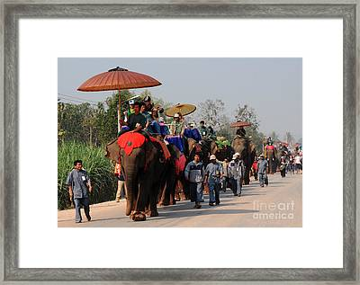 Framed Print featuring the photograph The Elephant Parade by Vivian Christopher