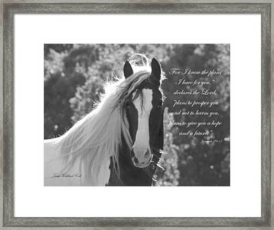 The Eyes Are The Window To The Soul Framed Print by Terry Kirkland Cook