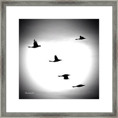 The Face Of Mother Nature Framed Print