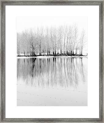 The Fair Glare Framed Print by Empty Wall