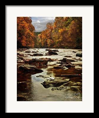 Autumn Leaf On Water Framed Prints