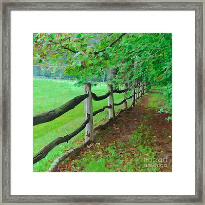 The Fence Path Framed Print
