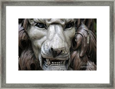 Framed Print featuring the photograph The Fierce Lion  by Kathy  White