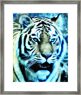 The Fierce Tiger Framed Print by Bill Cannon