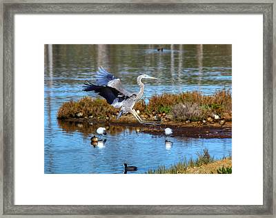The Final Approach Framed Print