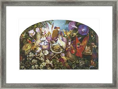 The Fledging Framed Print