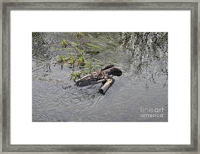 The Floating Island Framed Print