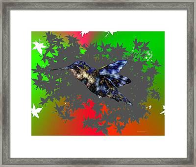 The Fly Of Hummingbird Framed Print by Mario Perez