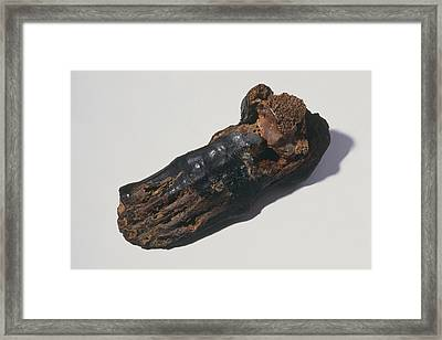 The Foot Of An Egyptian Mummy Framed Print