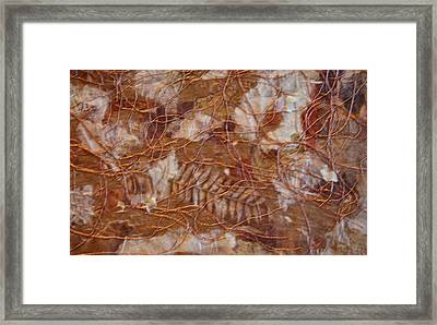 The Forest Floor  Detail Framed Print by Ruth Edward Anderson