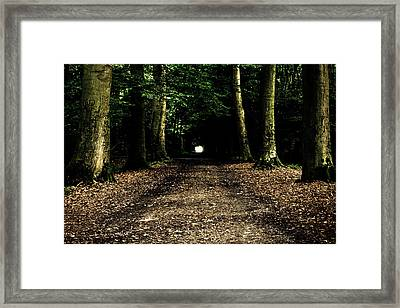 The Forest Tunnel Framed Print by Justin Albrecht